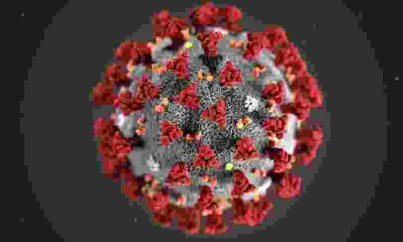 В регионе снова увеличилось число заболевших коронавирусом за сутки