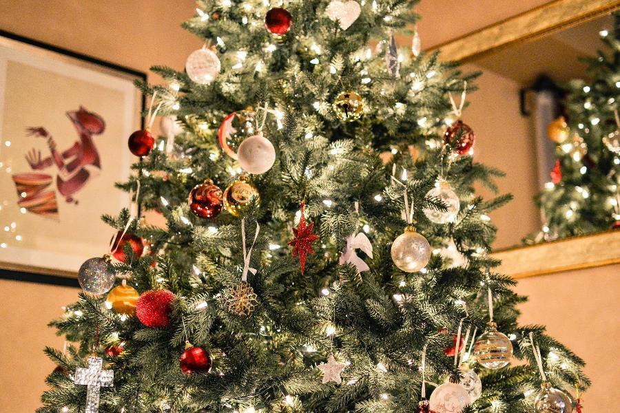 В России изменятся правила установки новогодних елок