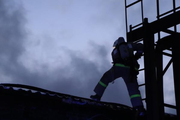 В Тамбовской области за минувшую неделю в огне погибли 4 человека
