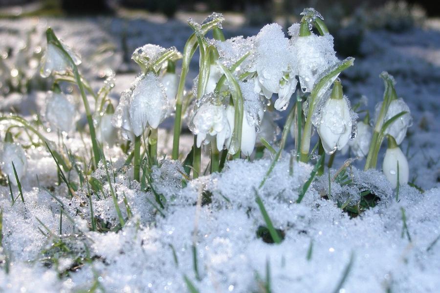 Гидрометцентр предупредил об аномальном потеплении