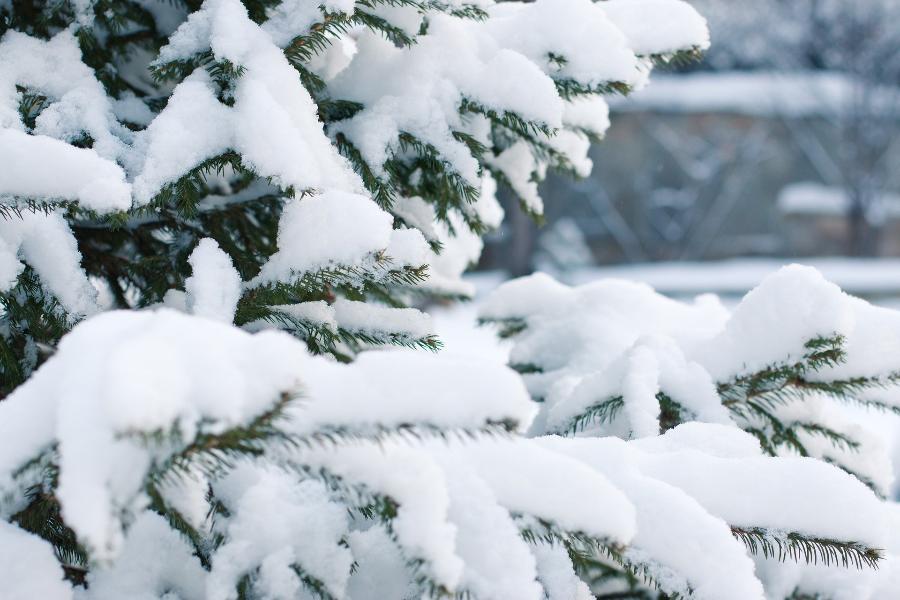 Спасатели дали совет россиянам, как не получить обморожение в холода