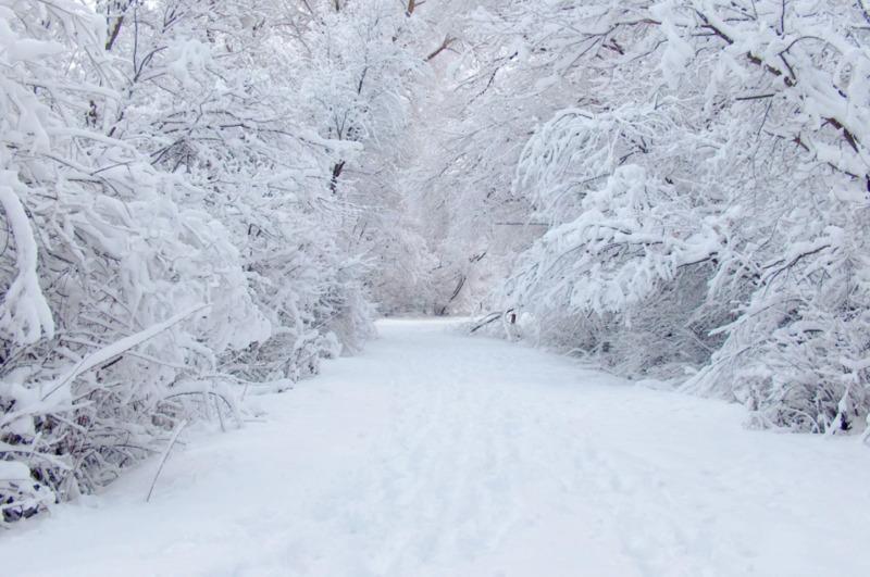 В 2021 году больше всего снега выпало в Уваровском районе