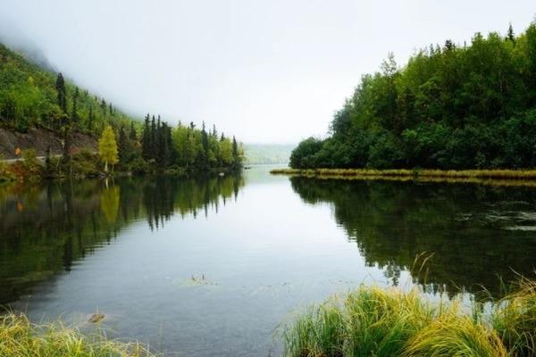 Экологическая реабилитация водоёмов отрицательно сказалась на питьевой воде