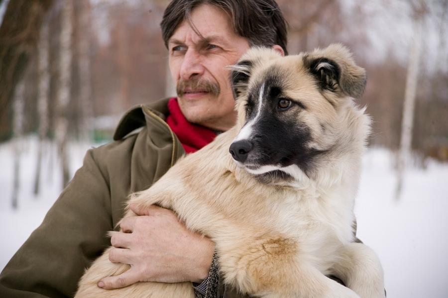 Госдума приняла проект о запрете изъятия животных за долги