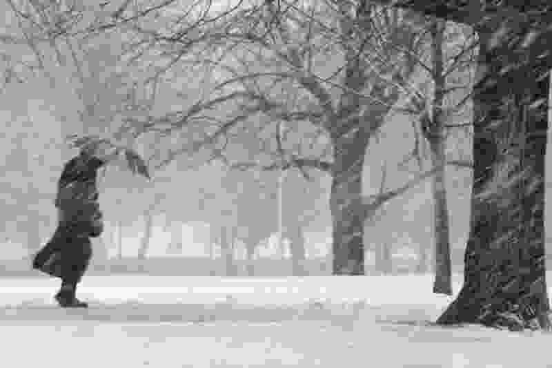 МЧС предупреждает тамбовчан о неблагоприятных погодных условиях 2 февраля