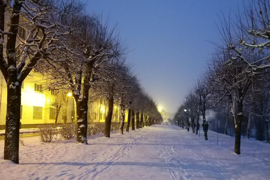 Ночной обзор: срок отмены масочного режима, радиационное охлаждение в Тамбове, МЧС в TikTok