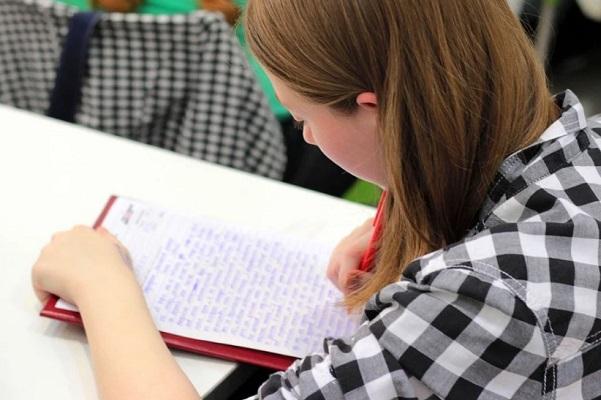Почти 9 тысяч тамбовских девятиклассников пройдут итоговое собеседование по русскому