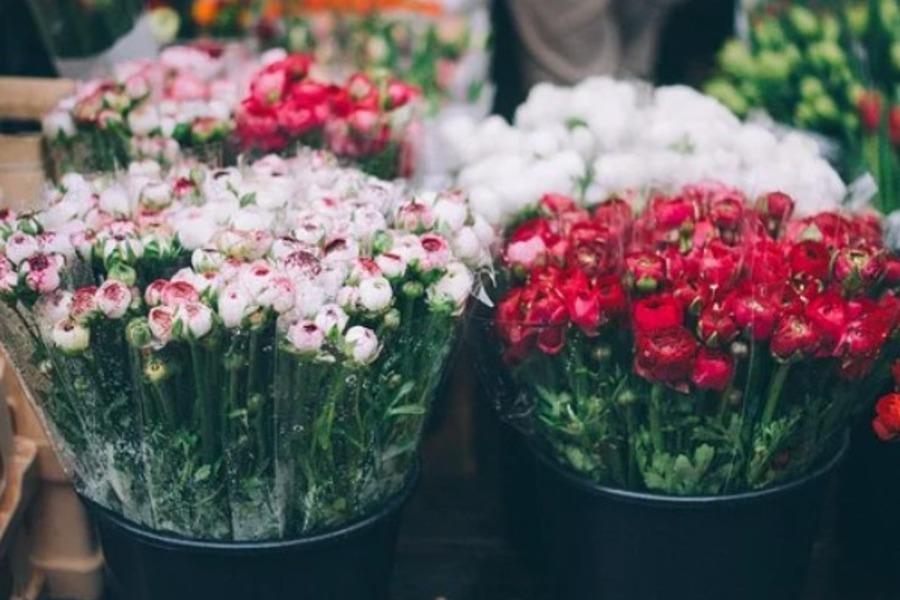 Продавцы предупредили о рекордном подорожании цветов к 8 марта