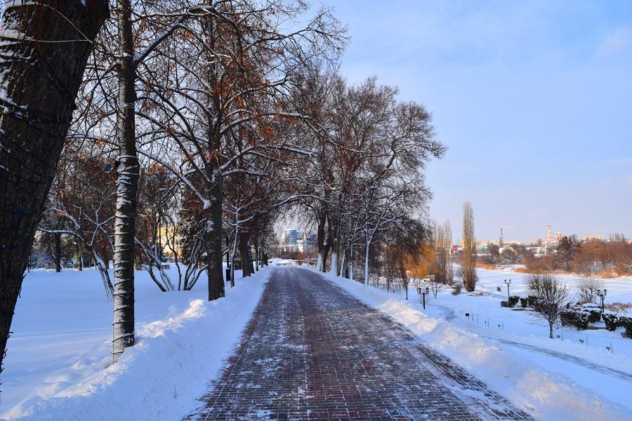 Синоптики о погоде: эта неделя станет самой холодной с начала зимы
