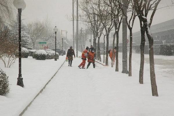 Синоптики о погоде: Тамбовскую область ждёт неделя снегопадов и метелей
