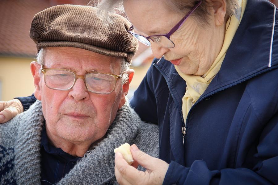 Стала известна самая высокооплачиваемая профессия для пенсионеров