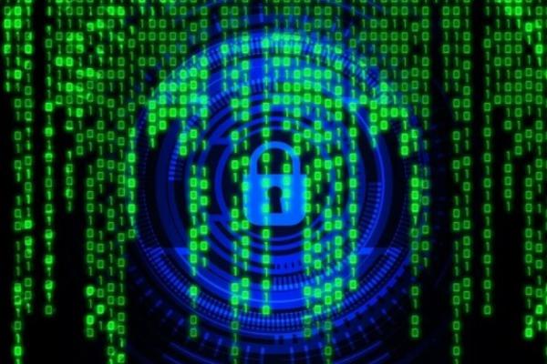 Стали известны методы кражи персональных данных россиян