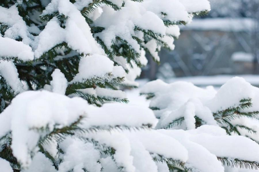 В Гидрометцентре предупредили об аномальных холодах