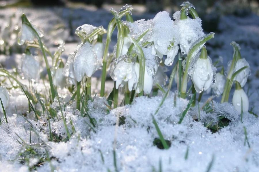 В Гидрометцентре рассказали о погоде в первые дни весны