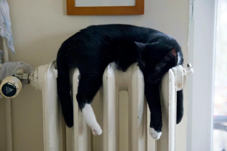 Тамбовчанам рассказали, когда отключат отопление