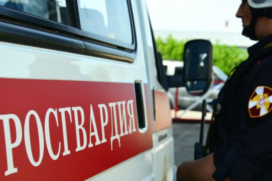 В Тамбовской области сотрудники Росгвардии задержали дебошира