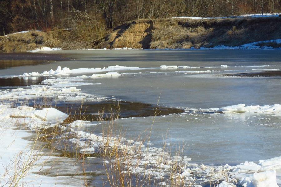 В Тамбовской области ведут контроль за паводковой обстановкой