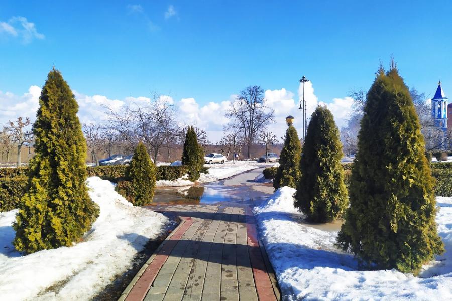 В центральную Россию приходит аномально тёплая погода