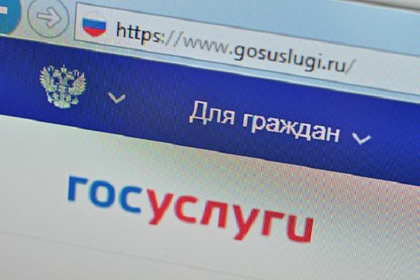 Россиян хотят регистрировать на госуслугах с рождения