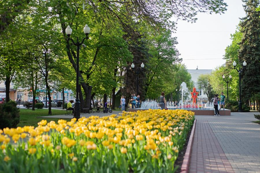 Три населенных пункта Тамбовской области выделяются благоприятной городской средой