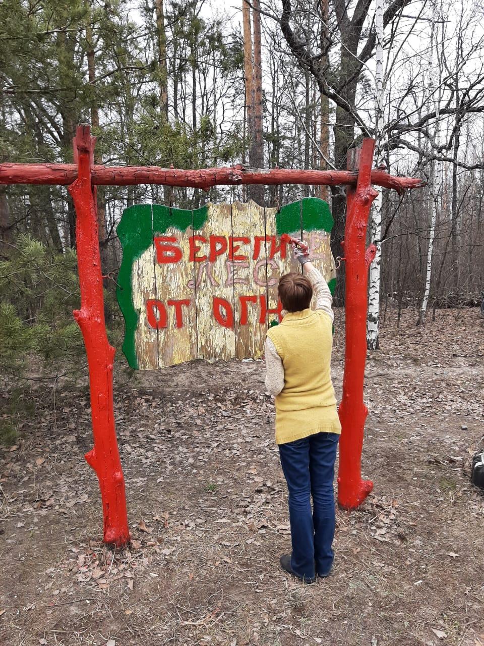 В лесах Тамбовской области оборудовали 365 мест отдыха
