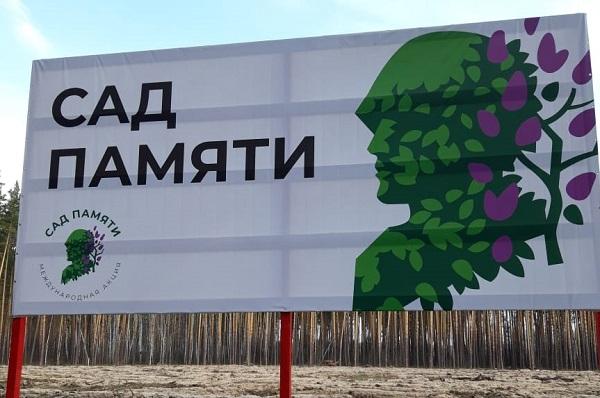 В лесах Тамбовской области сажают молодые дубы и сосны