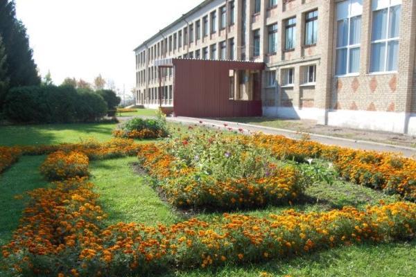В одной из школ Тамбовской области никак не могли поменять окна