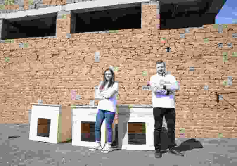 В Рассказовском районе для бездомных собак построили будки