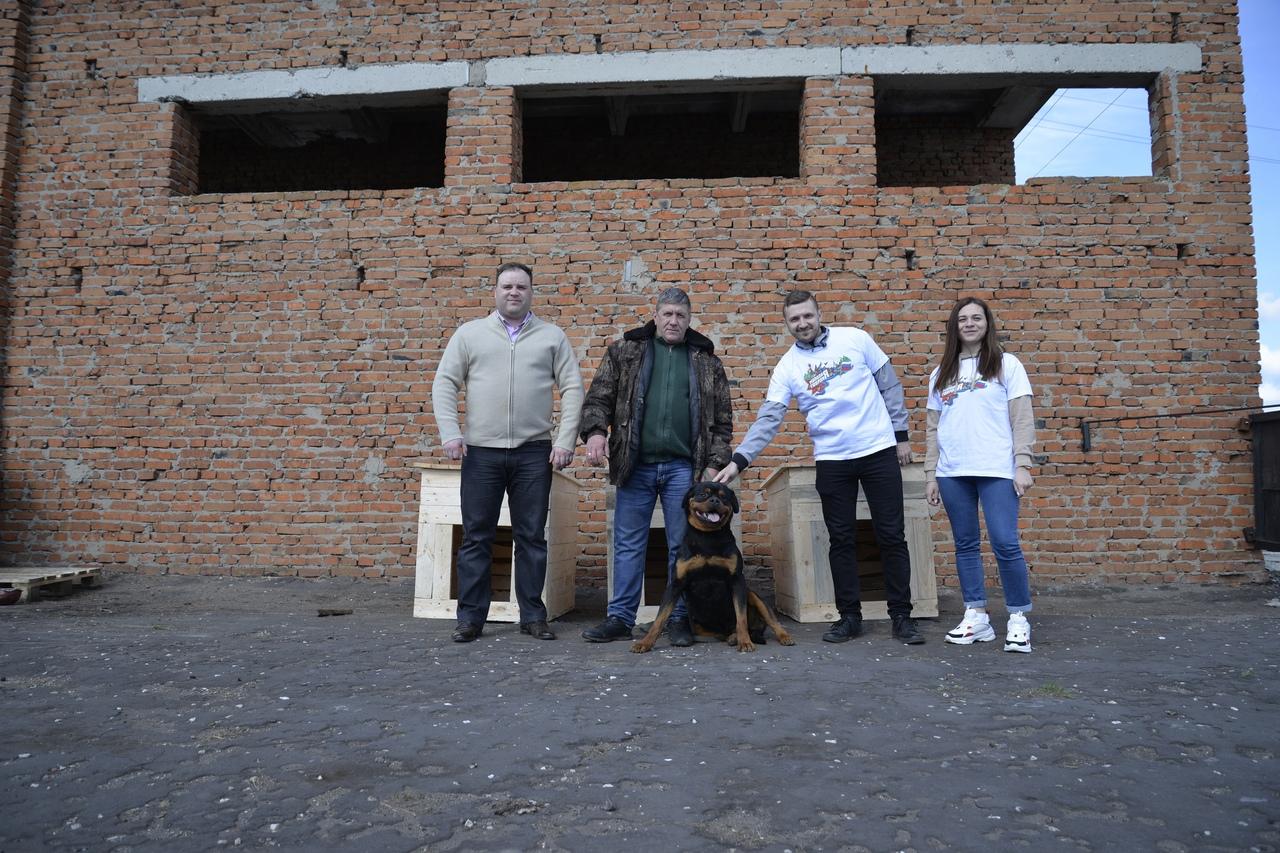 В Рассказовском районе для бездомных собак смастерили будки