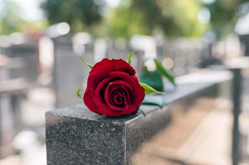 В Тамбове оцифровали все могилы на Воздвиженском кладбище