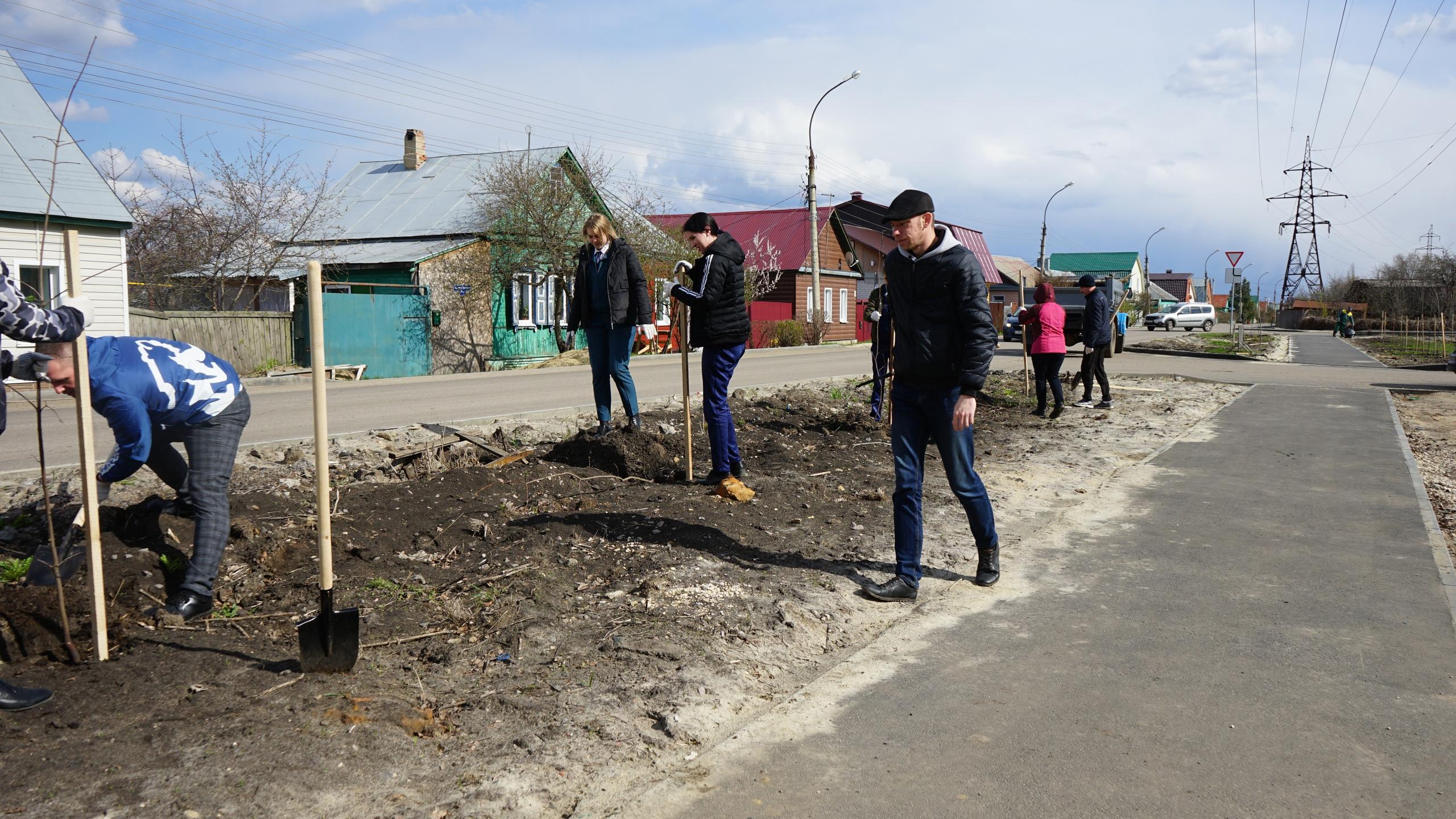 В Тамбове волонтеры высадили 45 молодых деревьев