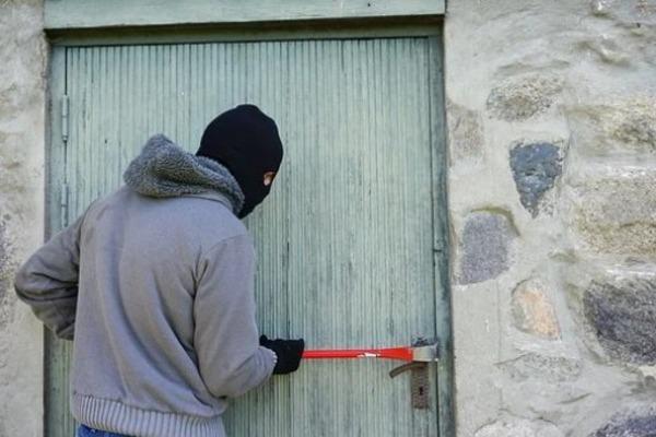 В Тамбовской области из магазина украли газонокосилку