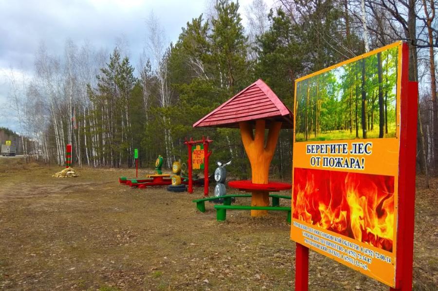 В Тамбовской области объявлено о начале пожароопасного сезона