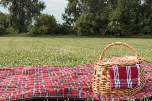 Врач предупредил об опасности пикников весной