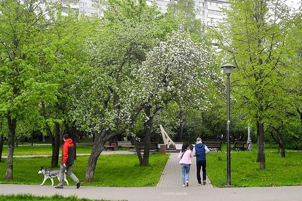 Число заболевших коронавирусом в России за майские праздники сократилось