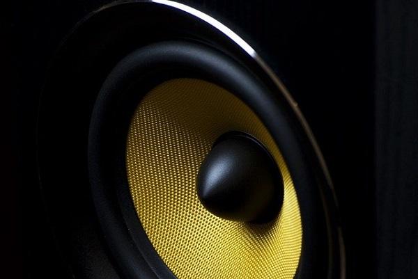 Совфед одобрил запрет звуковой рекламы из громкоговорителей