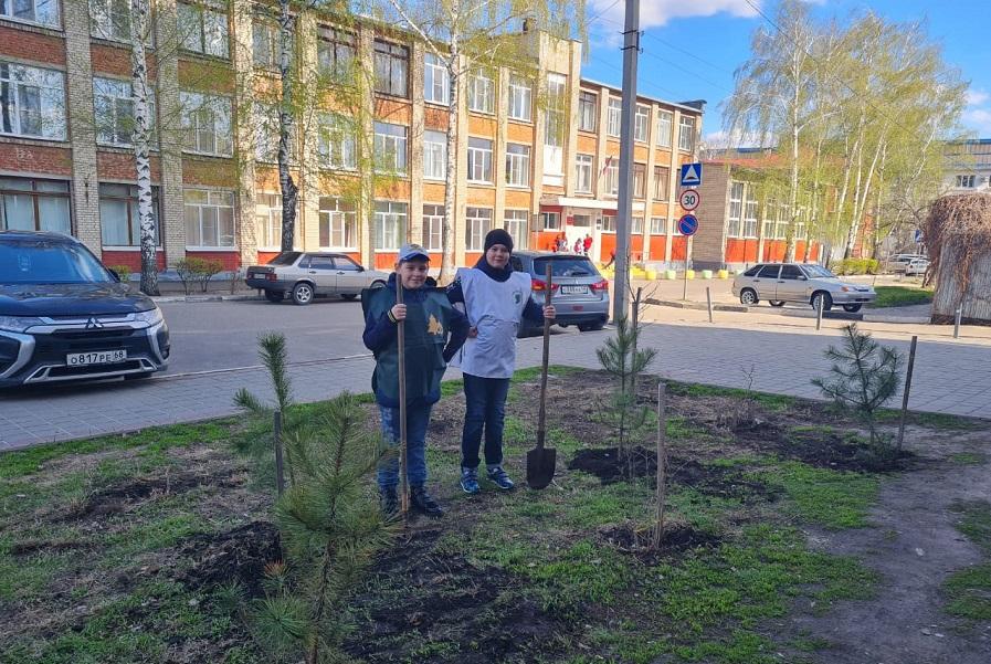 Тамбовские лесоводы передали студенческим организациям более 350 деревьев
