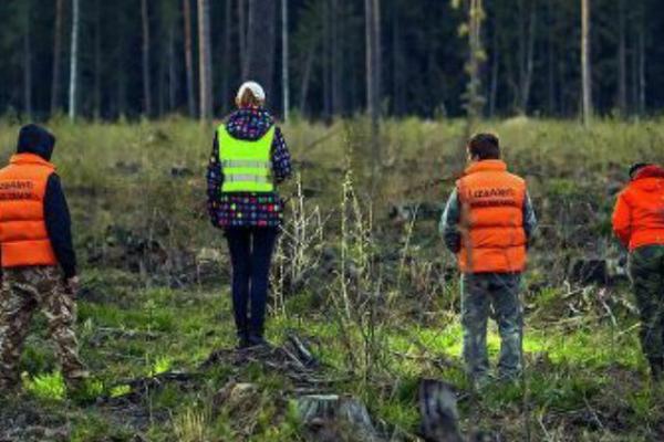 Тамбовские поисковики проведут полевую тренировку для новичков