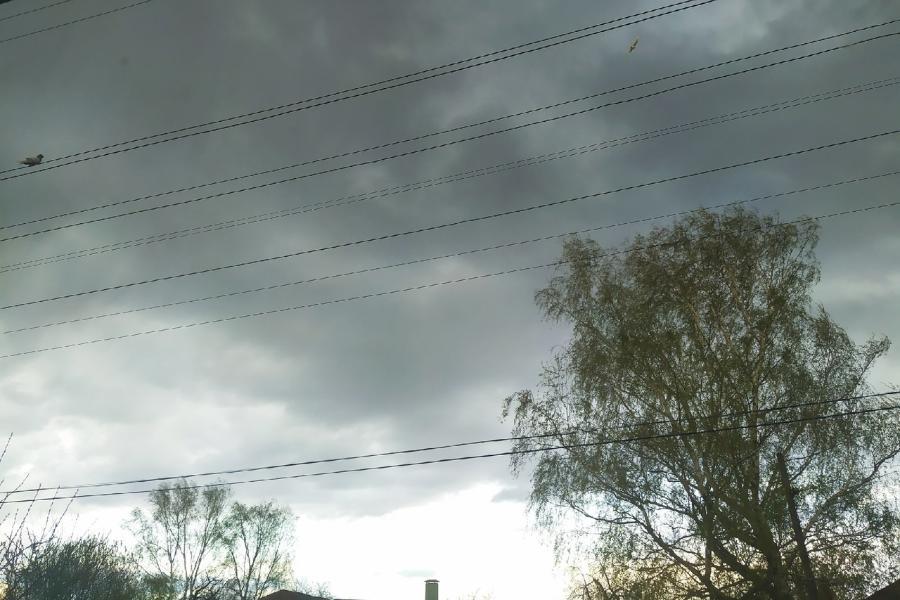 В Тамбовской области местами ожидается усиление ветра