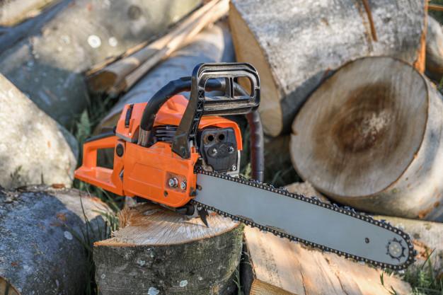За незаконную вырубку деревьев тамбовчанину пришлось заплатить крупный штраф