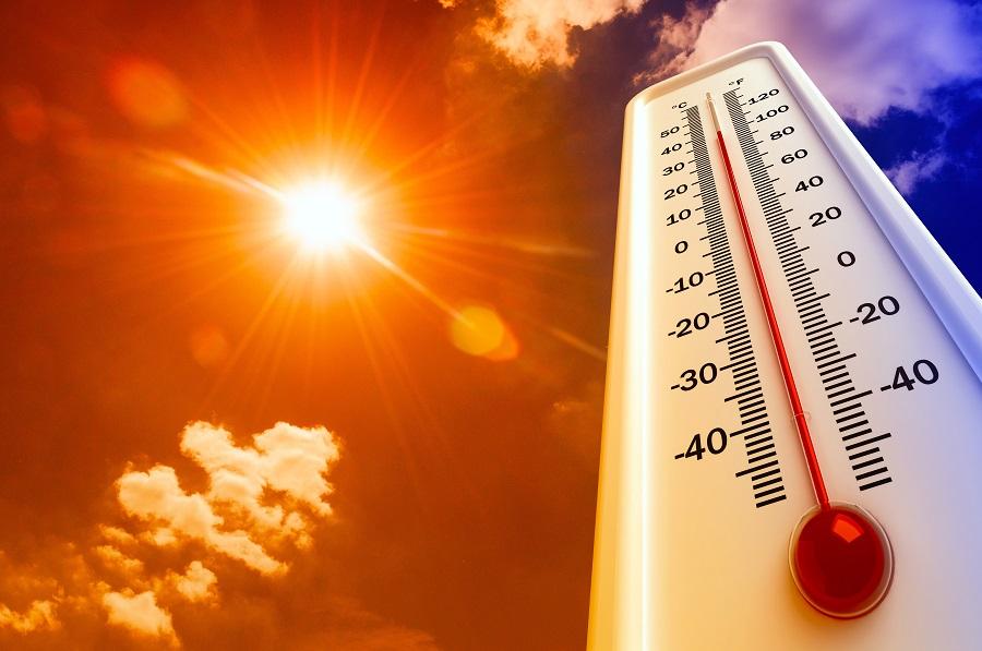 Аномальная жара в Тамбовской области продлится ещё несколько дней
