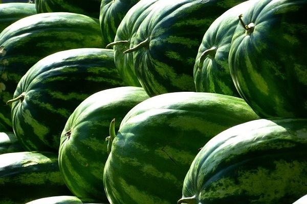 Диетолог рассказал об опасности употребления в пищу арбузов с нитратами