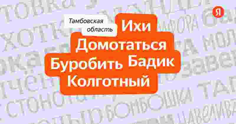 «Колгота» – самое «тамбовское» слово по версии Яндекса
