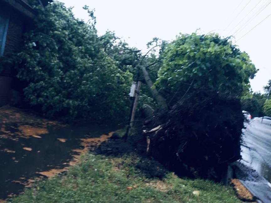 Повреждённые ЛЭП, поваленные деревья и перекрытые проезды: последствия урагана в Тамбове