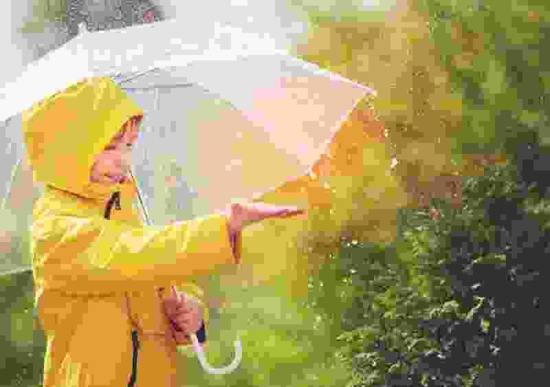 Рабочая неделя в Тамбове начнётся с дождей