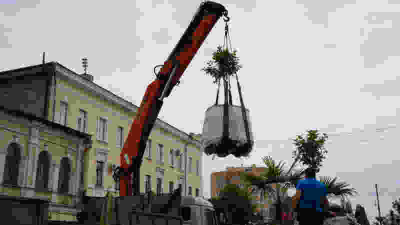 Тамбовчане: цветы на тамбовском Арбате не решают проблем города