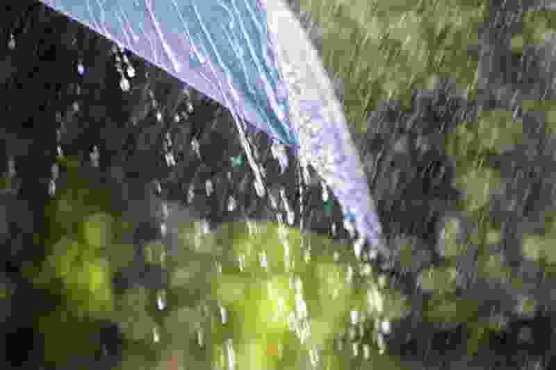 В Тамбовской области на смену жаре пришли ливни