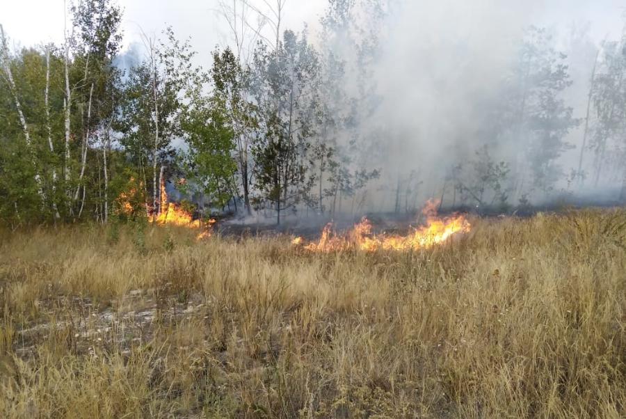 В Тамбовской области продолжает действовать особый противопожарный режим