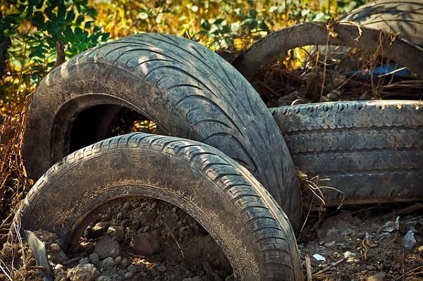 В Тамбовской области суд обязал администрацию сельсовета ликвидировать несанкционированную свалку