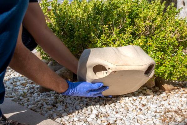 В Тамбовской области установили ловушки на опасных вредителей